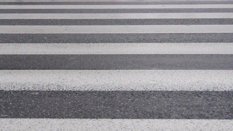 Pedestrian Crossing stock footage