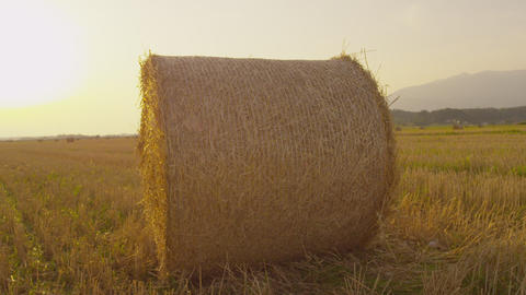 Bale of hay lying on field at sunset Footage