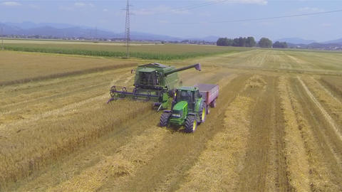 AERIAL: Combine harvester unloading wheat in a tru Footage