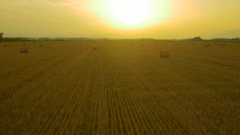 AERIAL: Bales of hay on a field at sunset Footage