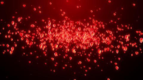 Heart Flying Valentine Love Animation