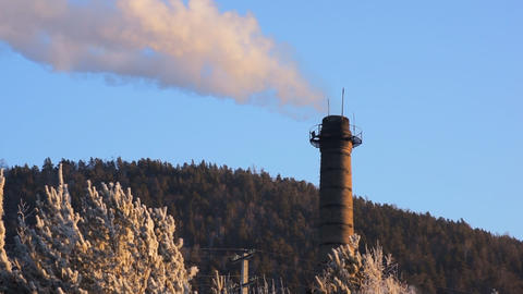 Chimney above the forest Live Action