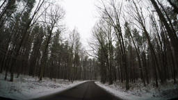 Slow Motion Driving Through Forest Road stock footage