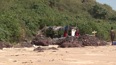 Aboriginal hut. India.Goa Footage