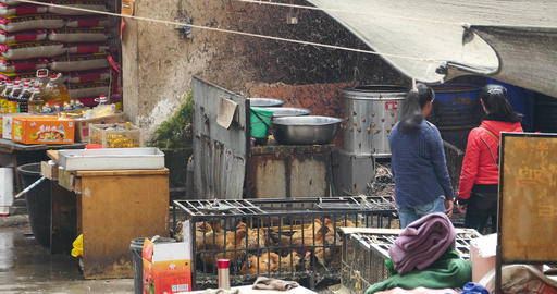 4k woman Selling Living Chicken At Farmers Market In shangri-la market,china Live Action