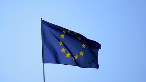 EU flag against the blue sky Live Action