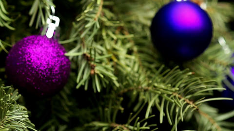 Coniferous Tree with Colorful Balls Footage