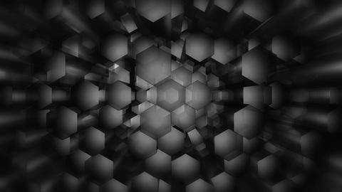 greysacale hexagonal stick Animation