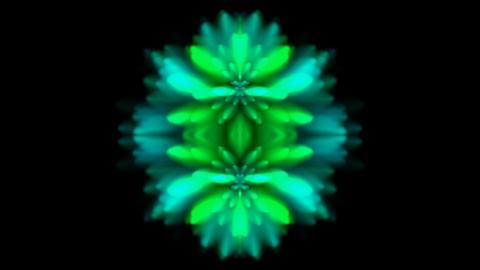 retro flower pattern,kaleidoscope,smoke texture,wedding... Stock Video Footage