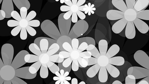 Tileable Monochrome Flower Background With Alpha stock footage