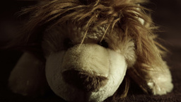 Cuddly Toy Lion HD Stock Footage stock footage