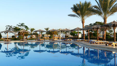 Swimming pool with palm trees in resort at morning Footage