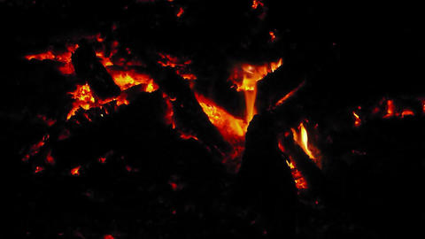 Fire On Log 1 stock footage
