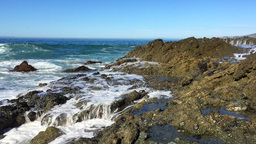 Waves crashing into reef Footage