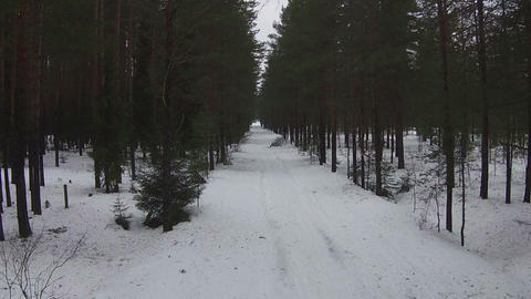 Flying Above Road In Winter Forest stock footage