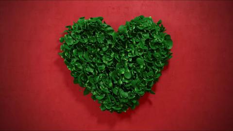 Flower Heart Logo【HD】記念日向けタイト After Effectsテンプレート