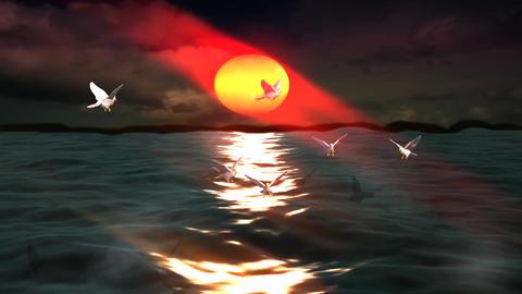 Bird Flock on Beautiful Sunshine Sea Island Stock Video Footage