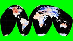 NASA NEO - LSTA. Goode. Graticule Animation