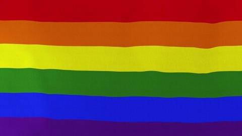 [loopable] LGBT Pride Rainbow Flag Waving In The Wind stock footage