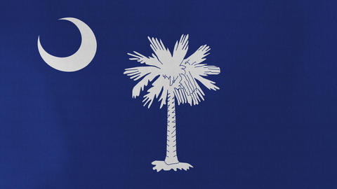 4K Loopable: South Carolina Flag Footage