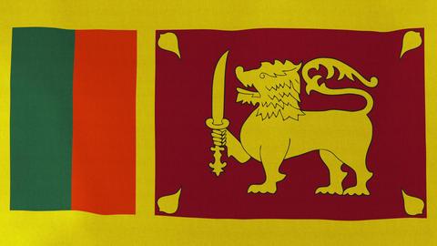 4K Loopable: Flag of Sri Lanka Footage