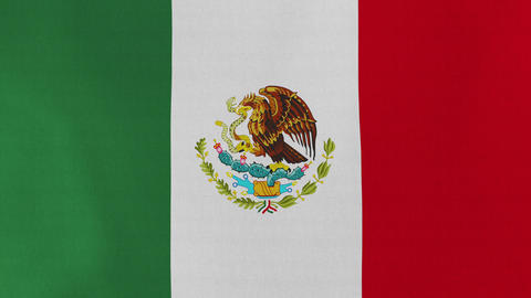 Loopable: Flag of Mexico Footage
