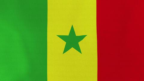 4K Loopable: Flag of Senegal Footage