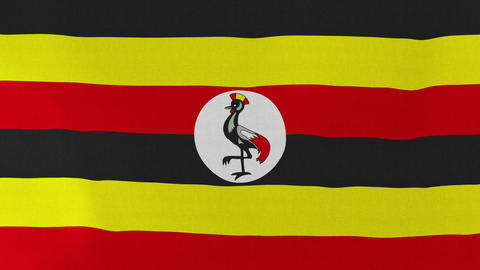 Loopable: Flag of Uganda ビデオ