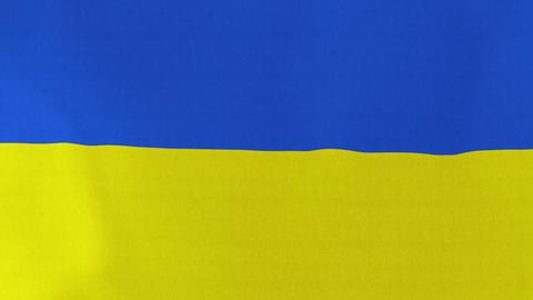 4K Loopable: Flag of Ukraine Footage