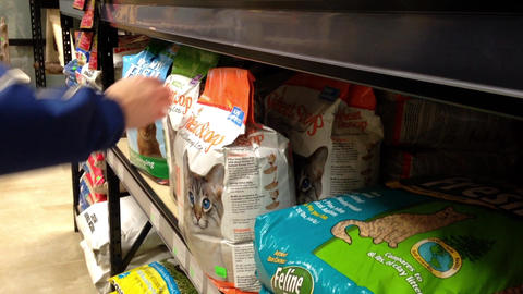 Man buying cat litter at pet store Footage