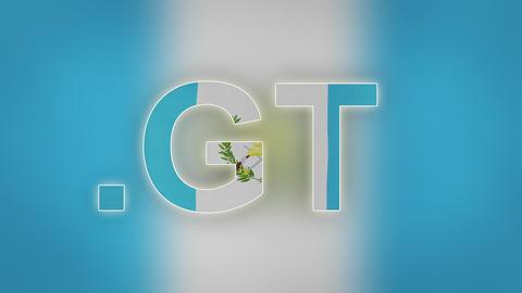 4K GT - Internet Domain of Guatemala Live Action