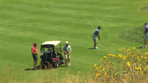 golf 5 5 이미지