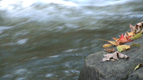 New England River 1 16 stock footage