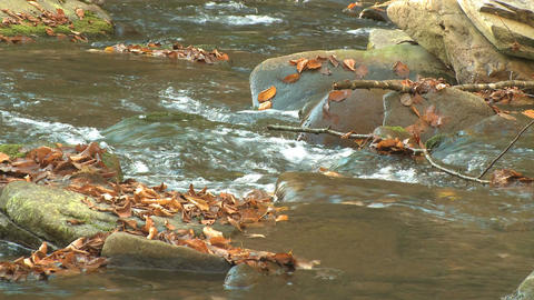 New England River Autumn 1 8 stock footage