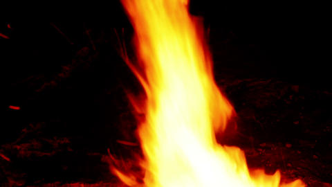 Real Fire stock footage
