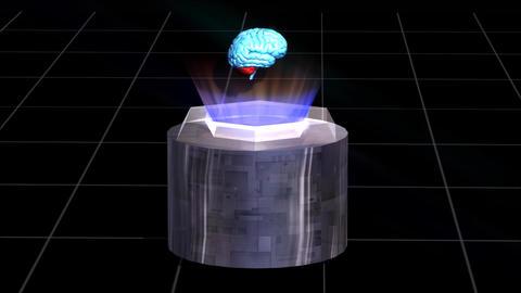 Brain Science Animation HD Footage