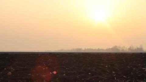 Autumn Field In Light Of Sunrise stock footage