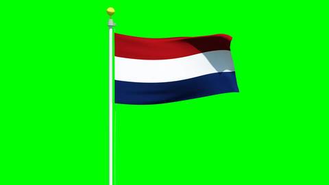 Waving Dutch flag on green screen Animation