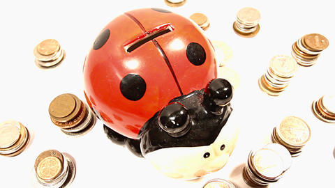 Ladybug Money Box and Coins 03 DOLLY Stock Video Footage