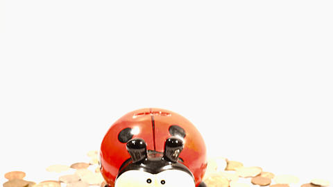 Ladybug Money Box and Coins TILTs Stock Video Footage