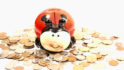 Ladybug Money Box and Coins TILTs Footage