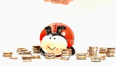 Putting Money into Ladybug Money Box and Coins 02 Stock Video Footage