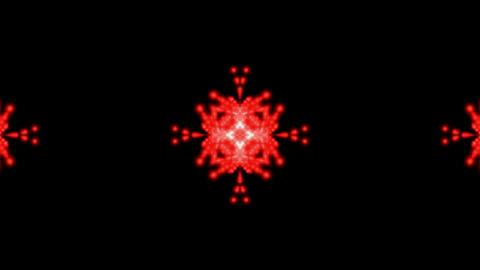 fire flower... Stock Video Footage