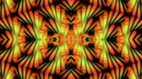 ornate flower pattern and pulse,fire,phenix... Stock Video Footage