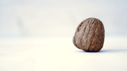 Walnut Close Up Rustic Background HD Stock Footage stock footage