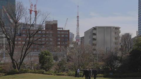 Tokyo midtown park - Tokyo Tower Footage