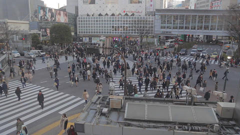 Wide Aerial - Shibuya road crossing before sunset Live影片