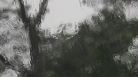 Storm And Heavy Rain stock footage