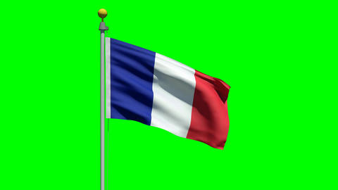 Waving flag of France Animation