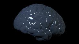 Throbbing brain Stock Video Footage